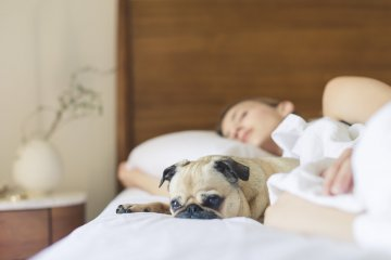 Egyedül alvók is felismerhetik az alvási apnoe jeleit